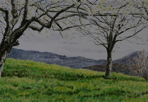 Frühling an der Limburg 2013, Öl auf Holz, 50 x 20 cm, 2014
