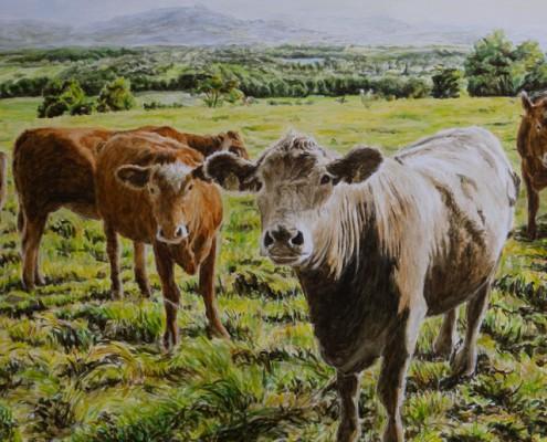 Ölbild: Kühe und Kälber vor der Teck und Kirchheim-Jesingen, 2010, Öl auf Holz, 40 x 80 cm