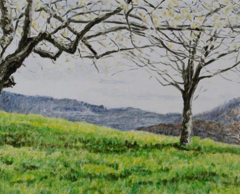 Ölbild: Frühling an der Limburg (Weilheim/Teck) 4, 20 x 50 cm, 2014