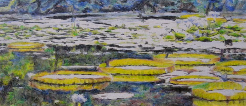 Seerosenteich in der Wilhelma 5, Öl auf Holz, 10 x 23 cm, 2016