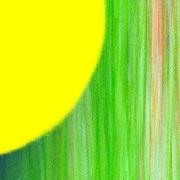 """Ausstellung """"Farben"""" anke Kreis und Kornelia Pfütze"""