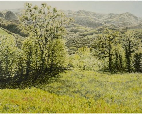 Montefeltro im Frühling, Öl auf Holz, 52 x 90 cm, 2018